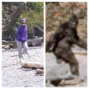 BIGFOOT sighting!